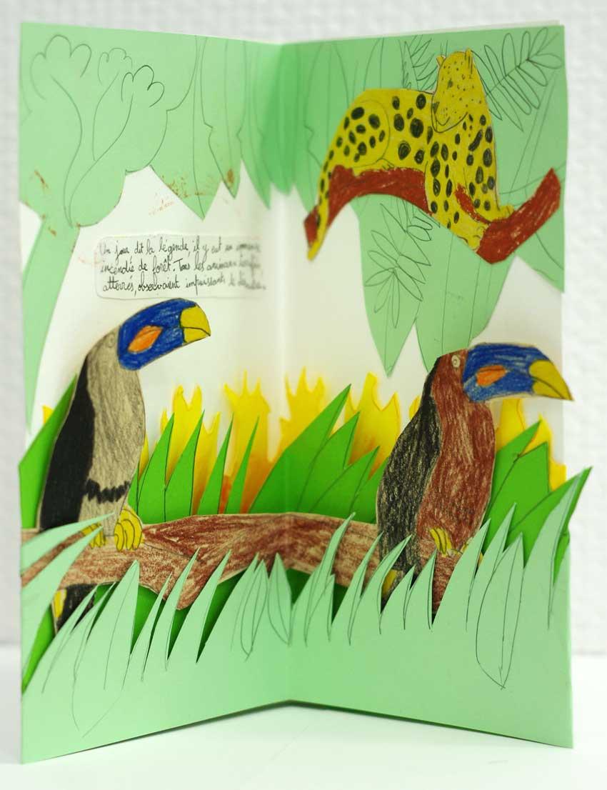 livre animé atelier-pop-up-jaguar-toucan-foret